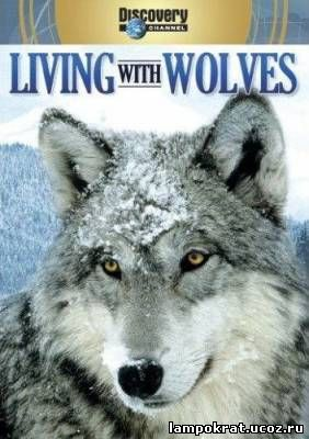 Discovery: Living With Wolves / Жизнь с волками (2005)